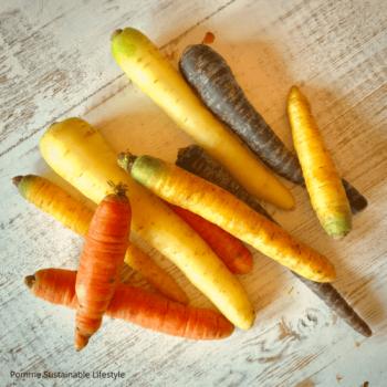 lees hier alles over wortels, voedingswaarde en gezondheid